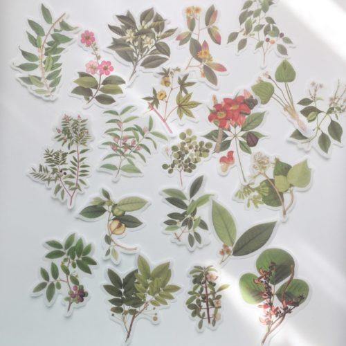 Flora sticker set - Groen - Bloemen